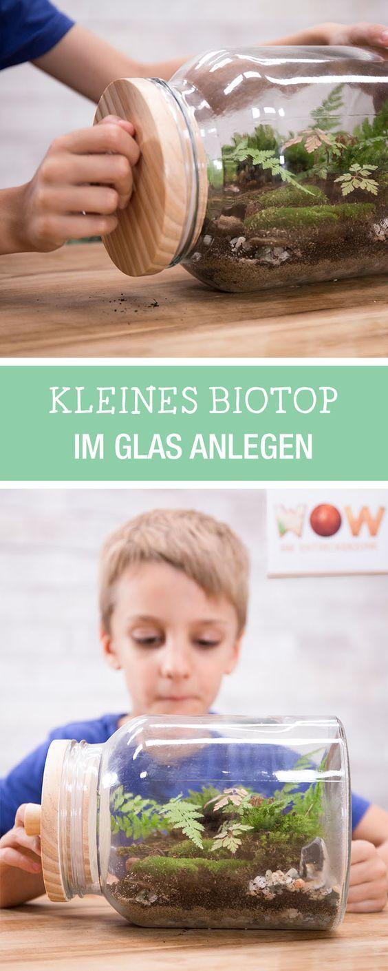 DIY trifft Wissenschaft für Kinder: Biotop im Glas selbermachen, Gärtnern mit Kids, ein Projekt von TOGGO / fun experiment for kids: how to make a biotop via DaWanda.com