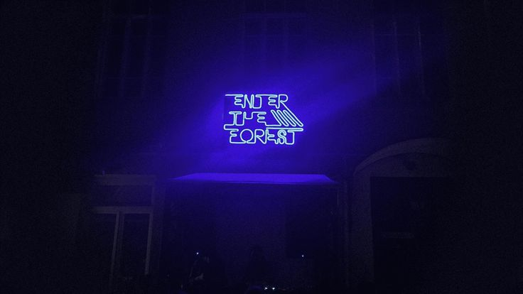 Neon Flex installation for Sūpynės festival 2017