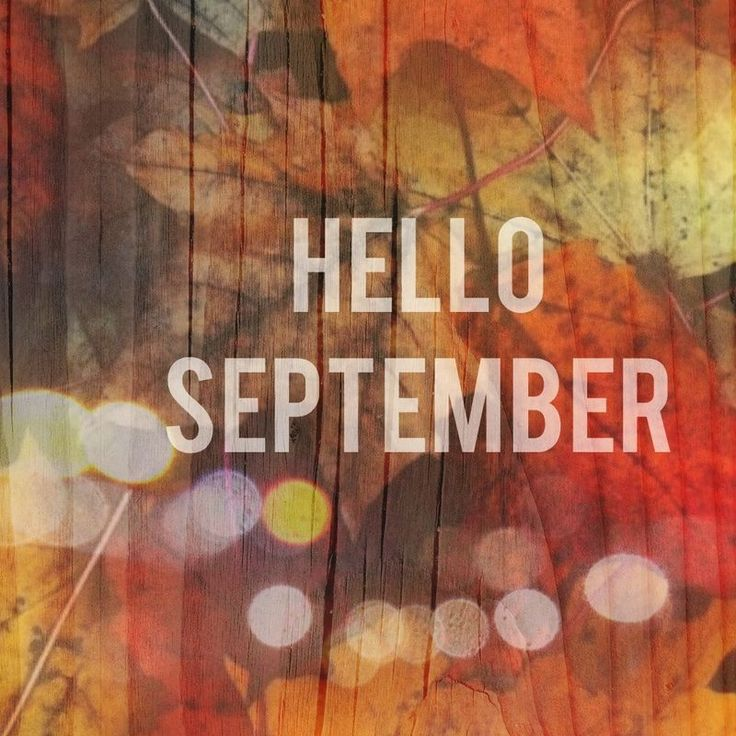 Best 25+ Hello september ideas on Pinterest  September, Birthday month and S...