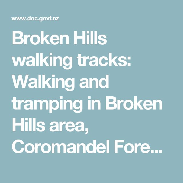 Broken Hills walking tracks: Walking and tramping in Broken Hills area, Coromandel Forest Park