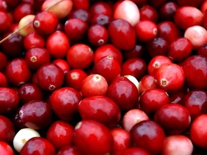 Narsai David Recipe: Chilean Cranberry Bean Casserole With Pebre (Salsa) « CBS San Francisco