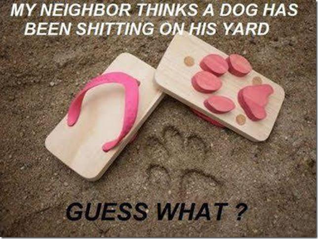 i WANT these!!! HAHA
