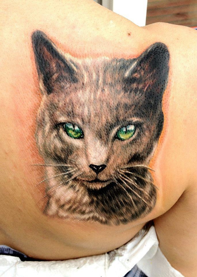 228 best cat tattoos images on pinterest cat tattoos kitty cats and tattoo ideas. Black Bedroom Furniture Sets. Home Design Ideas