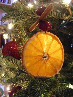 Dried orange ornaments - we did these for yule and they looked amazing on the tree!