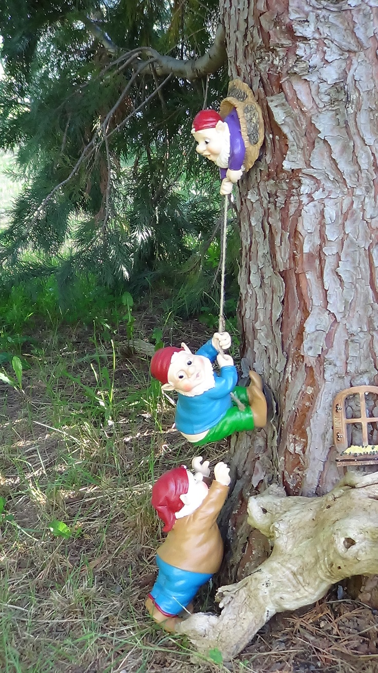 Funny Gnomes: 17 Best Ideas About Funny Gnomes On Pinterest
