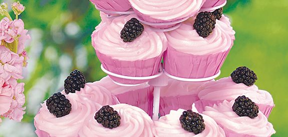 Sandra Lee Blackberry Swirl Cupcakes- Blackberry Swirl Cupcakes