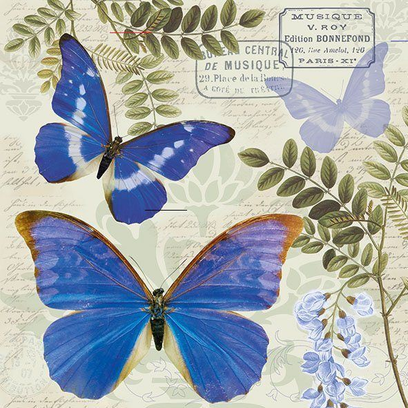 Serviette /'Rosen /& Schmetterlinge/'