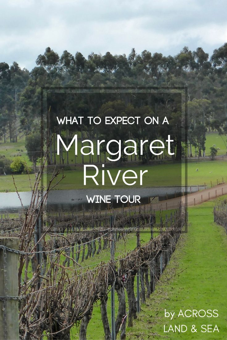 What to expect on a Margaret River Wine Tour