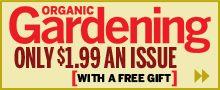 Simple Garden Tip: Best Seed Tape Ever: Organic Gardening