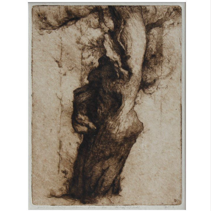 """charles.weed"""" Oak Tree"""" , etching and drypoint, 24 x 18cm, 2016"""".  For Sale. #charlesweedetching #oaktree"""