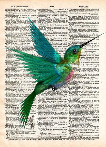 hummingbird art print bird
