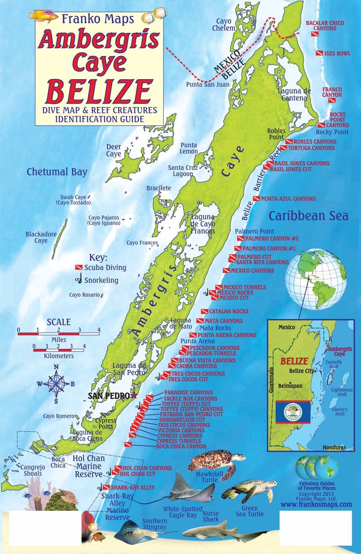 Maps of san pedro and ambergris caye ambergris caye dive map and belize pinterest - Ambergris dive resort ...