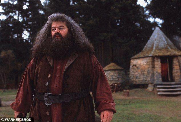 Rubeus Hagrid, een reus van bijna 3,7 meter hoog, met verward zwart haar en een baard. Hij werd verbannen uit Zweinstein en zijn toverstok was gebroken, maar Professor Perkamentus liet hem blijven als schoolopzichter. Hagrid wordt al snel een goede vriend met de drie studenten.
