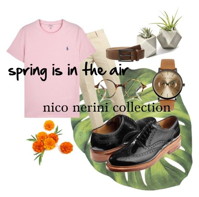"""spring is in the air"" by nico-nerini on Polyvore featuring Calvin Klein Collection, Polo Ralph Lauren, Trafalgar, Ted Baker, Finlay & Co., men's fashion e menswear"