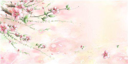сакура рисунок - Поиск в Google