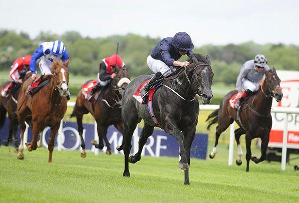 Latest Horse Racing News, Race Results, Race Cards, Race Tips & Fixtures | Irishracing.com