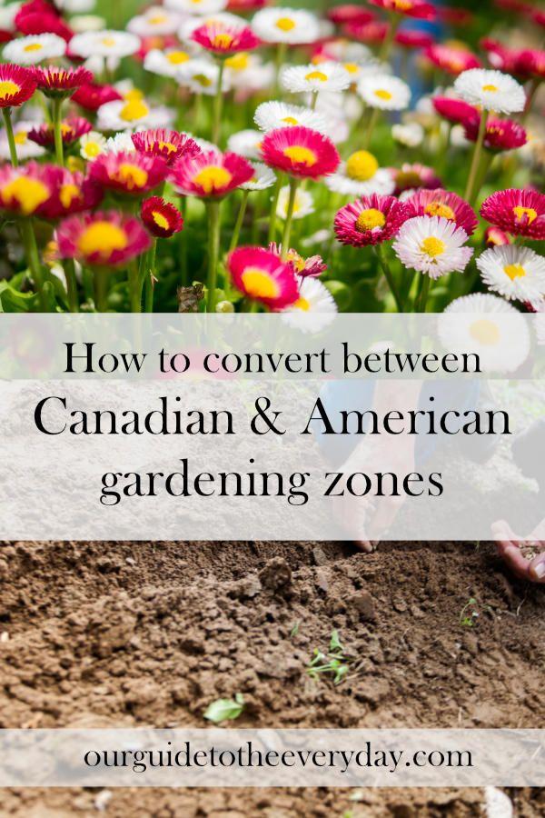 Gardening Zones | Canadian Garden Zone | American Garden Zone | Plant hardiness zones | Gardening Tips | ourguidetotheeveryday.com