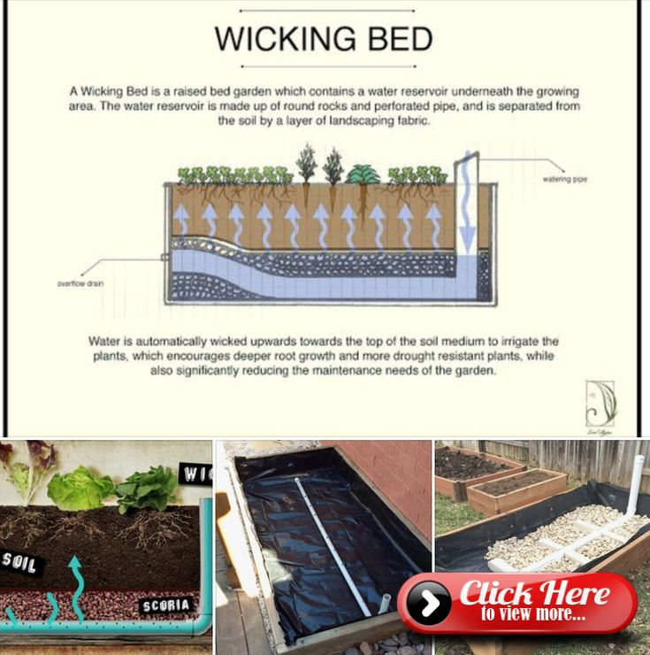 Building Raised Garden Beds, Wicking Beds