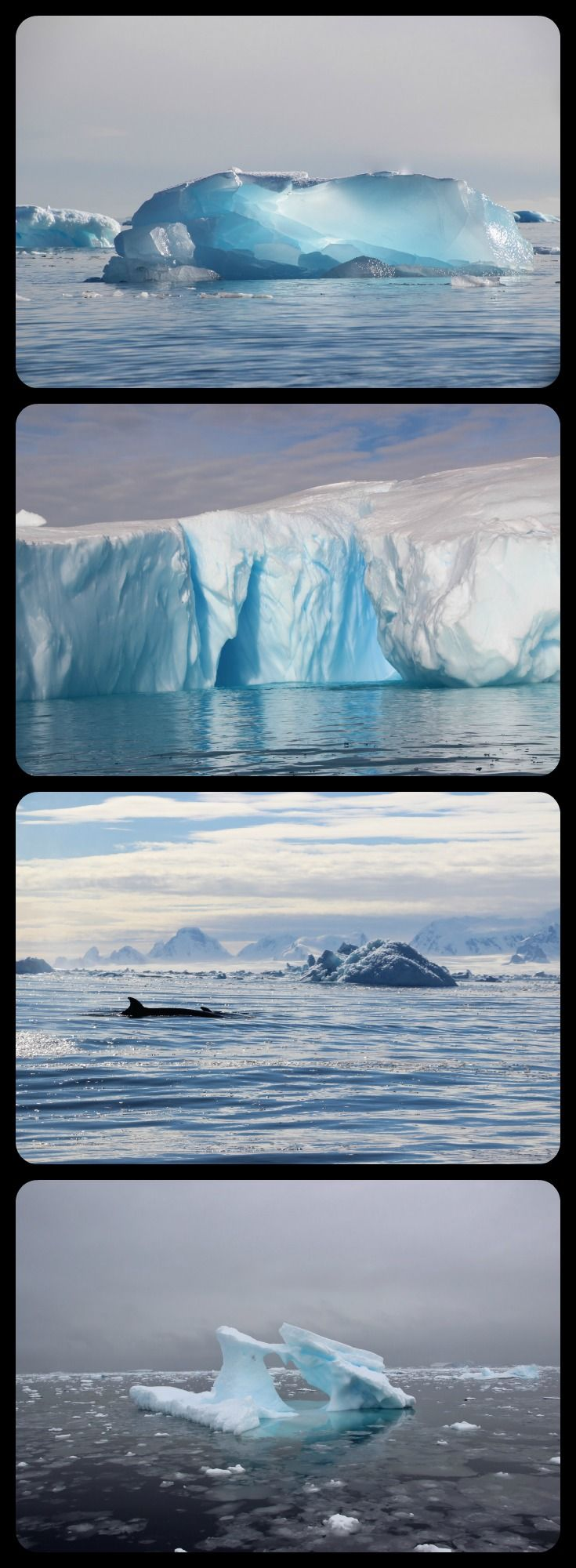 Unforgettable blue icebergs in Antarctica... an expedition cruise to this part of the world really is a travel dream come true.