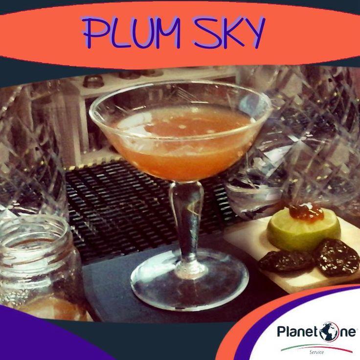 """Cocktail Alcolico """"Plum Sky"""" Ingredienti: 2 bar spoon confettura di prugne metà lime (succo) 1.1/4 oz Rum 1/2 oz zucchero liquido home-made (creare acqua infusa di cannella e aggiungere il miele in parti uguali) Per la ricetta completa visita: www.planetone.it/plum-sky/"""