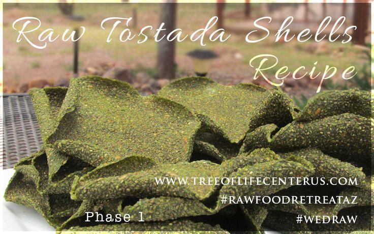 Raw Tostada Shell Recipe  –  Tree of Life Center US