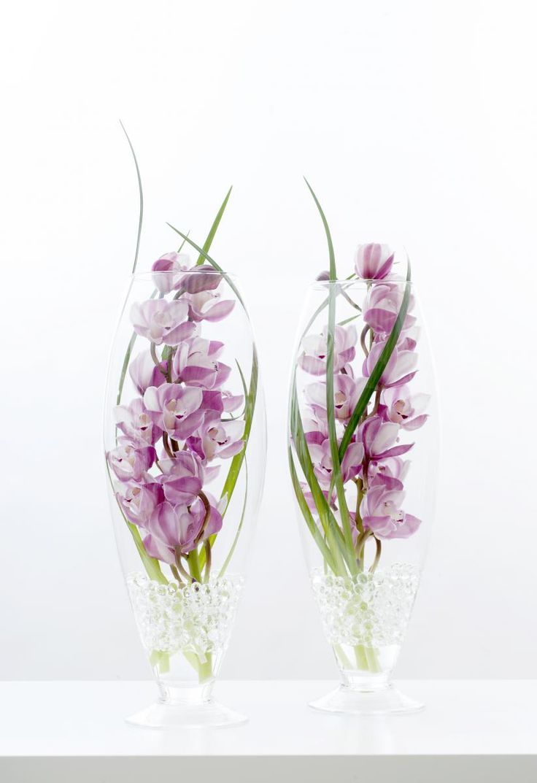 74 Best Images About Beautiful Cymbidium Flower