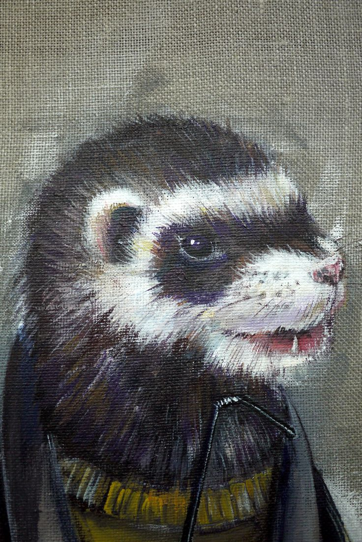 #ferret #acriliconcanvas #friend #art #acrylic