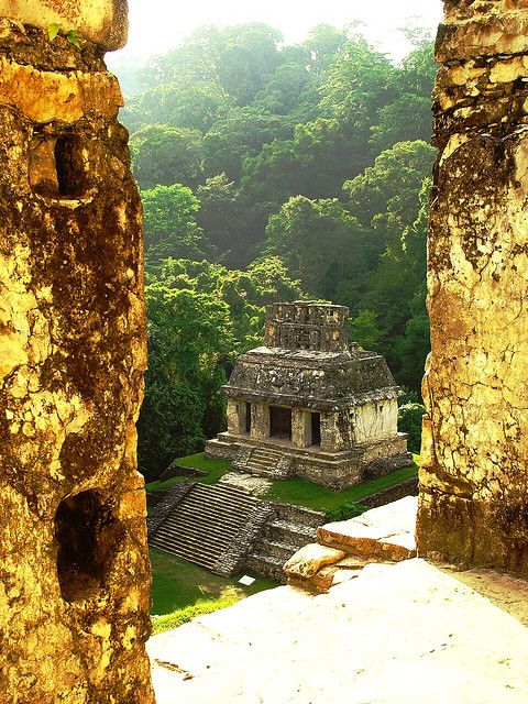 Palenque, Chiapas, Mexico - I went for an early morning walk around the site. And later on I climbed the steps of the main building. Inside you find the famous grave stone of Pacal. Unfortunately I was not the only visitor there and it was sticky, hot and humid inside the pyramid. But still I loved it!