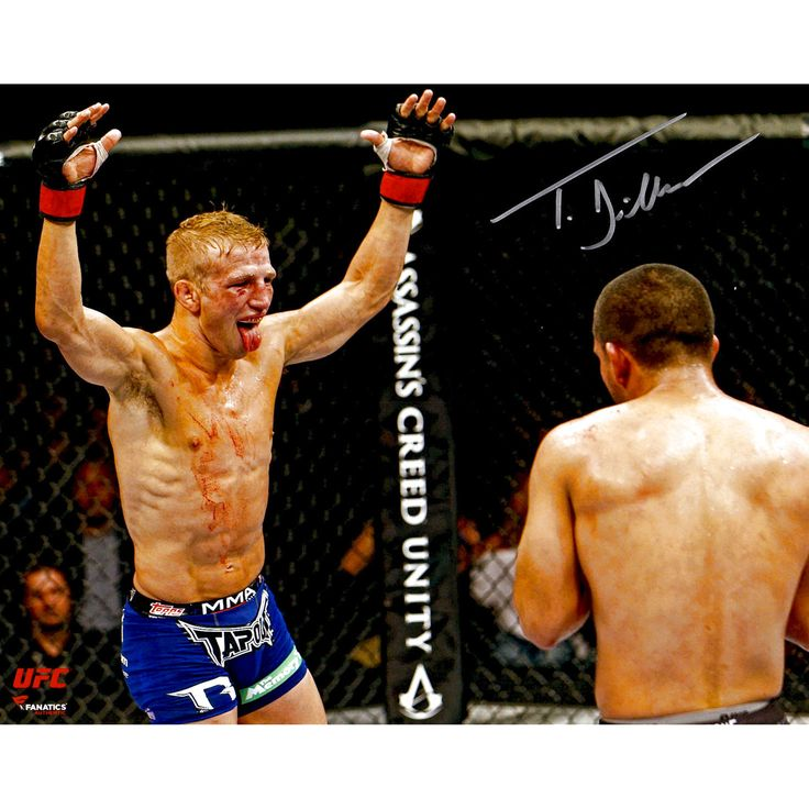 TJ Dillashaw Ultimate Fighting Championship Fanatics Authentic Autographed 8'' x 10'' Raising Arms Taunting Photograph - $43.99