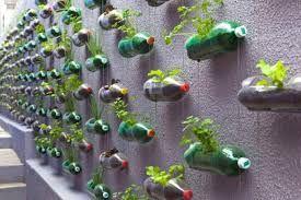 Resultado de imagem para como fazer horta suspensa em garrafas pet