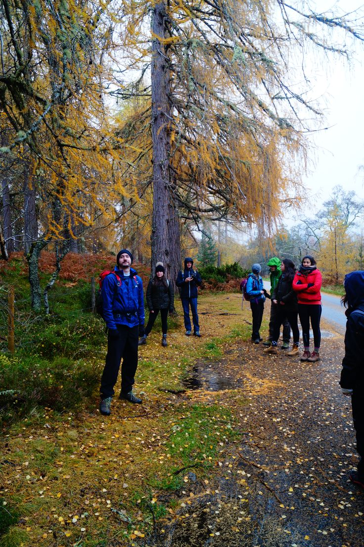 Conservation Science Field Trip to the Cairngorms- Hayden (helpful and enthusiastic postgrad) is about to talk to the group about what makes a native species in the UK. Is the distinction important? Do Larch trees fill an otherwise unfilled niche in Scotland? Would Larch have arrived on its own by now without it being brought by people?  #ConSci #FieldTrip #Ecology #Outdoorlearning #Trees