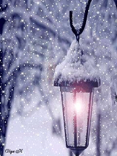 <3 Shining a light on the warmest greetings for a Merry Christmas and a Happy New Year! <3