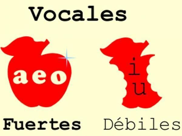 Las Vocales Fuertes Y Las Vocales Débiles Ejemplos Vocal E Reglas De Acentuación Fuerte