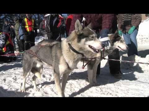 ▶ Winter is Community in Explorers' Edge - YouTube