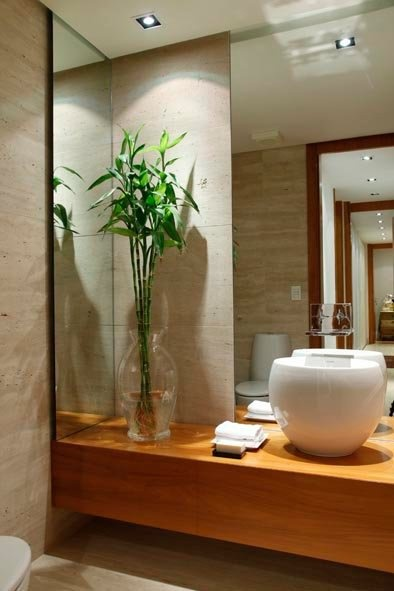Simone Grangeiro Paisagismo: Arranjo natural com Bambu da Sorte. Love the simplicity of this design.