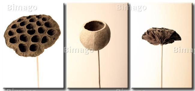 """Stampe su 3 tele """"Con naturale semplicità"""" piante secche // Dried flowers and plants on canvas, 3 pieces //"""