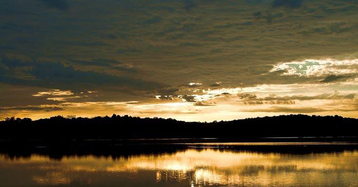 Răsărit la baltă    Mijitul zorilor s-a însoţit cu răcoarea dimineţii de…