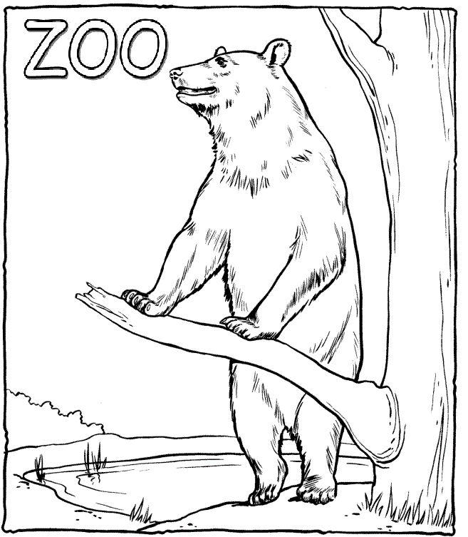 60 best Zoo images on Pinterest | Färben, Zoos und Farbe