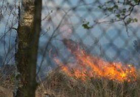 20-Apr-2014 12:18 - BRAND HOGE VELUWE: PARK ONTRUIMD. Nationaal Park De Hoge Veluwe wordt ontruimd vanwege de heidebrand bij Hoenderloo. Er zijn volgens de brandweer 1500 tot 2000 bezoekers in het park. Het personeel is bezig iedereen te waarschuwen. Alle toegangspoorten gaan dicht. De ontruiming gebeurt uit voorzorg. Eerste Paasdag is doorgaans een van de drukste dagen van het jaar. In het park brak vanmorgen brand uit. Zeker 10 hectare hei en gras is verwoest. De brandweer is met groot...