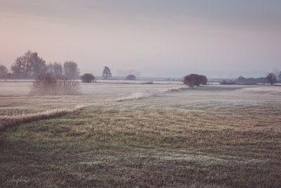Góra Kalwaria, Masovian Voivodeship, Poland   http://ewkaphoto.blogspot.com/ http://www.facebook.com/ewkaphoto/ #WINTER #DAWN #FOG #FROST #NATURE #LANDSCAPE #PHOTOGRAPHY #EWKAPHOTO