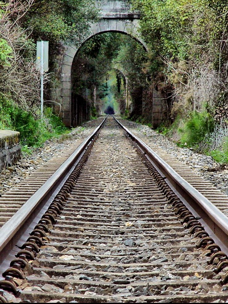 love this!! for someday... Train track archway. beautiful vow venue or engagement photo op ...