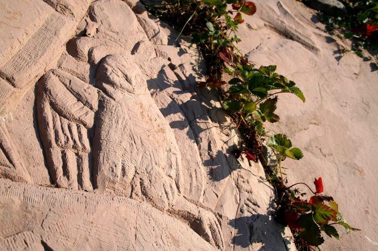 Particolare incisione su pietra di Antonio Chessa