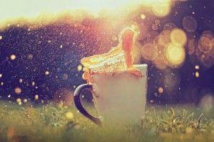 Bokeh Cup Tea Splash HD Wallpaper