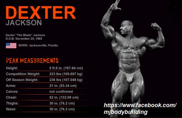 dexter  u0026quot the blade u0026quot  jackson body measurements