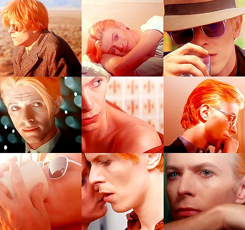 The Man who fell to Earth / Various