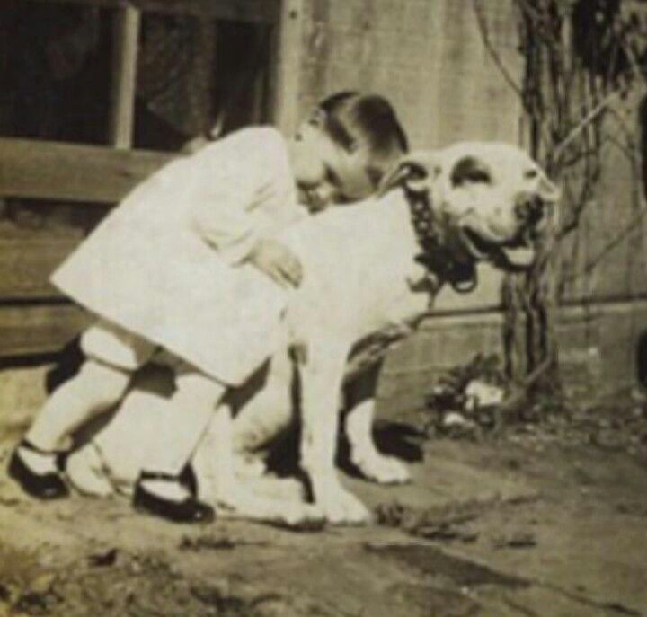 Vintage Pit Bull and his little child. Love this DG