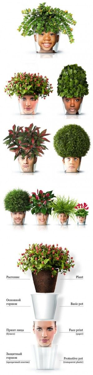 Inspiration - Face Pots (search Nov 10 2013)