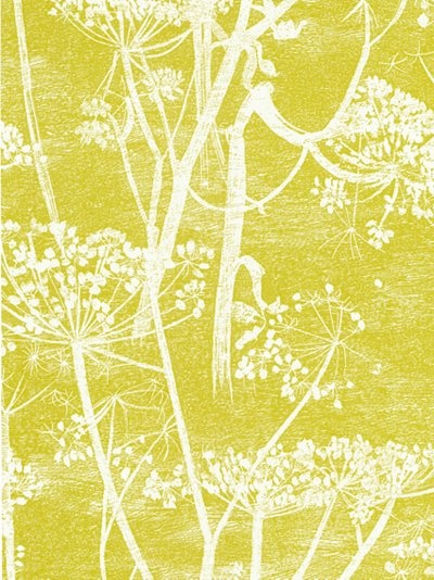 Cole & Son cow parsley £62 a roll from JL.  This is today's favourite.