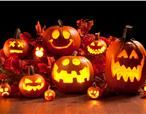 Hooi Hooi! #Halloween special this #fall on a #Dutch #farm in a luxury #lodgetent. Check out farmcamps.nl