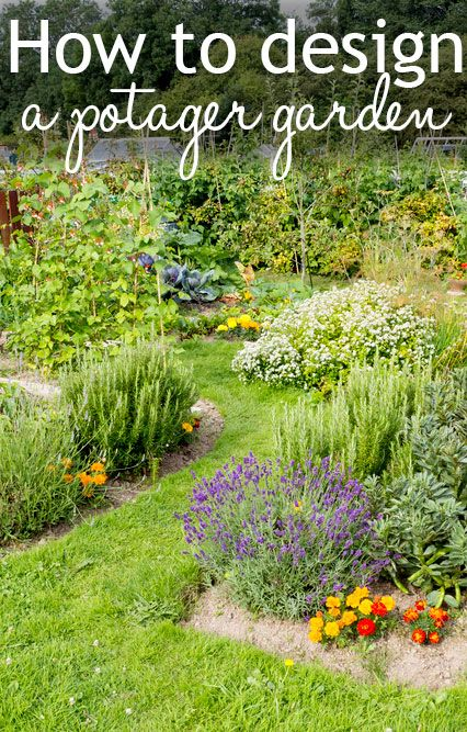 How to design a potager garden. Inspired by the French style that seeds flowers and herbs grown alongside veg crops. Such a cute allotment garden